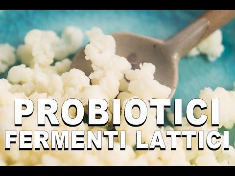 Probiotici e Fermenti Lattici