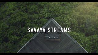 SAVAYA STREAMS DEC 22 - 6 PM