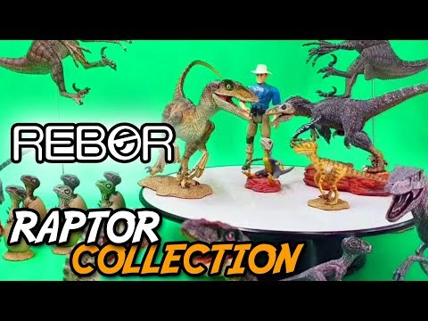 REBOR® Complete RAPTOR Collection