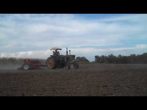 Drilling (seeding) Wheat JD 3010 and IH 510 drill