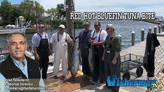 June 13, 2019 Long Island Metro Fishing Report with Fred Golofaro