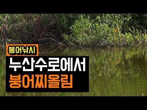 김포 누산리수로 | 자연지 붕어낚시 | 찌올림�