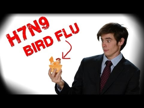 Bird Flu Outbreak in China! | Learn Chinese Now