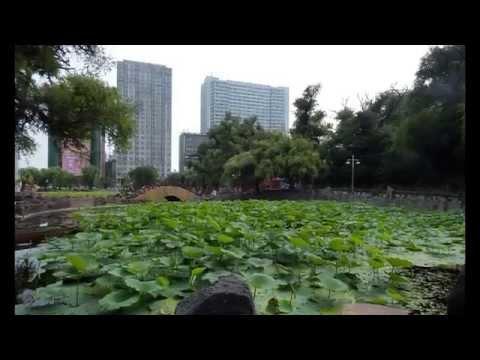 Китай порно фото эро broddarpcom