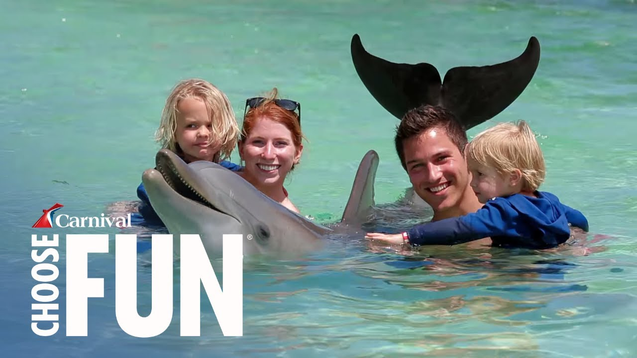 Dolphin Swim Amp Snorkel In Mahogany Bay Carnival Shore