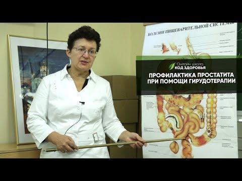 Профилактика простатита при помощи гирудотерапии