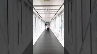 HERMAN TØMMERAAS | AMALIE SNØLØS | MIAMI 2018