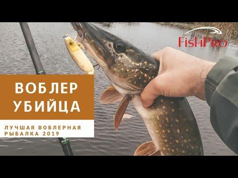 Воблер-убийца. Лучшая воблерная рыбалка 2019. Jackall Magallon. Norstream Spiker II.