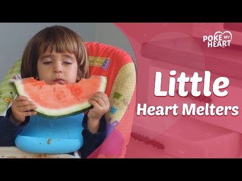 Little Heart Melters