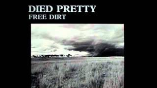 Died Pretty - Round & round