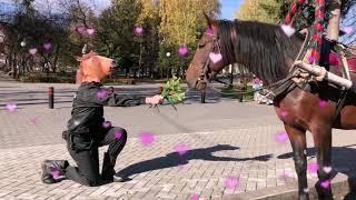 Конная полиция ТНТ сериал - признание в любви