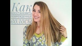 Восстановление поврежденных волос  Уход за волосами  DAV NES CH  REVLON BAT STE REVLON
