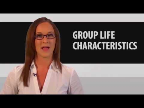 7   Group Life Insurance