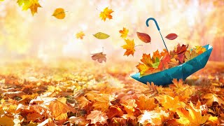 3 Hours Relaxing Morning Music in Autumn 🎵 Meditation Music, Yoga, Healing (Autumn Life)