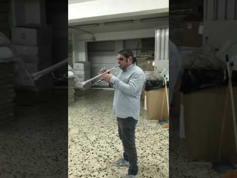 The GODFATHER theme - solo trumpet