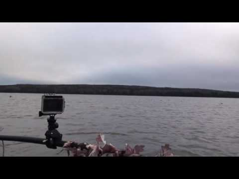 OPEN WATER DUCK HUNTING