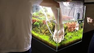 Aquarium water change - time lapse thumbnail