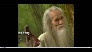 Đưa em tìm động hoa vàng -  Phạm Thiên Thư  Phạm Duy -  KARAOKE DVD