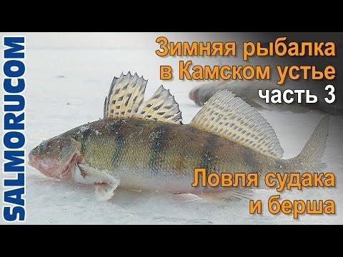 оснастка для ловли судака и берша на тюльку