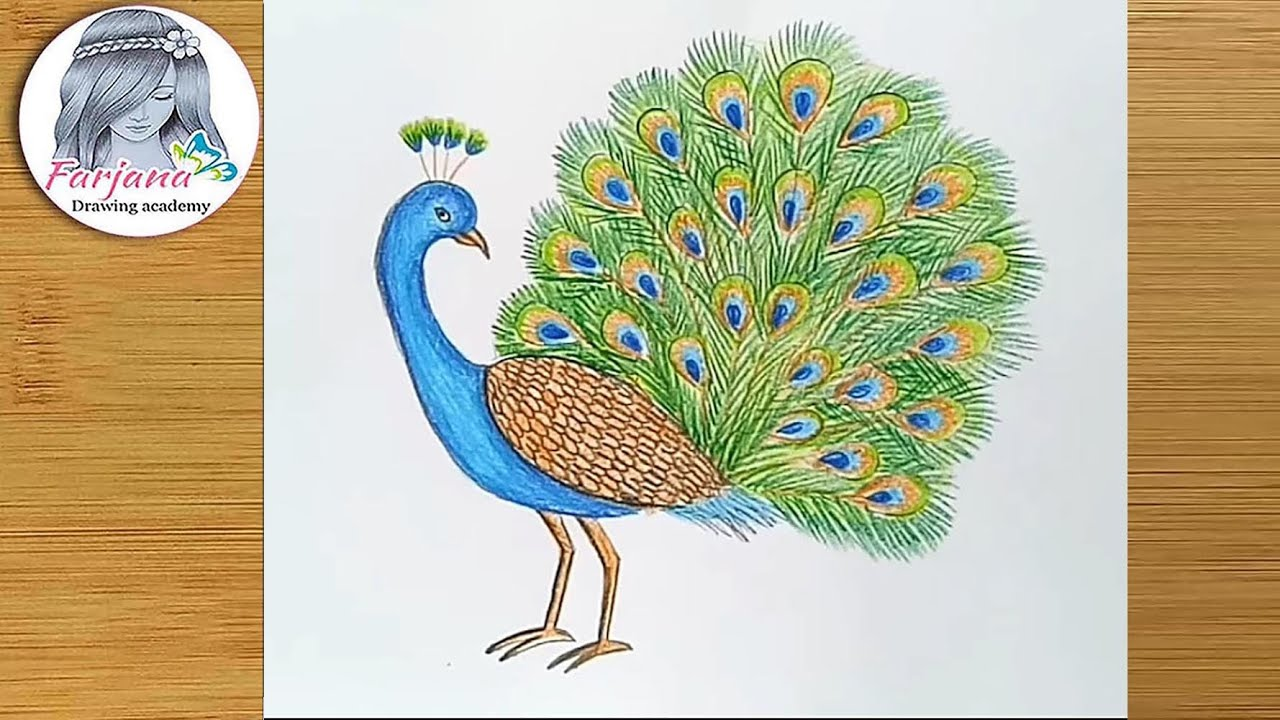 How To Draw A Peacock Step By Step Youtube