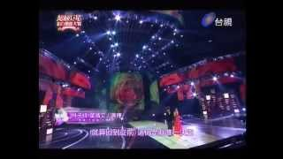 2013 超級巨星紅白藝能大賞 葉蒨文 - 選擇