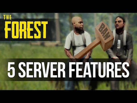 TOP 5 SUGGESTED SERVER FEATURES! The Forest
