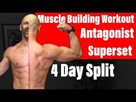 A Great Muscle Building Workout! Antagonist 4 day Training Split.