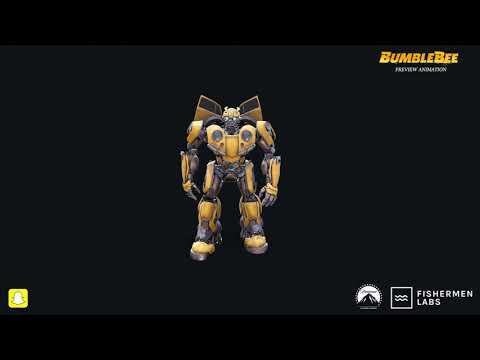 Bumblebee Transformation