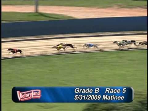 Victoryland 5/31/09 Matinee Race 5