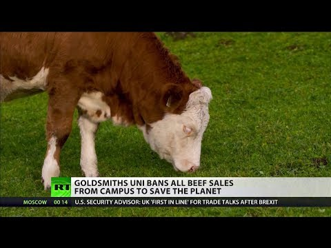 Goldsmiths Uni Bans All Beef Sales From Campus To Save The Planet