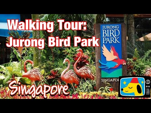 JURONG BIRD PARK, SINGAPORE || WALKING TOUR || By Stanlig Films