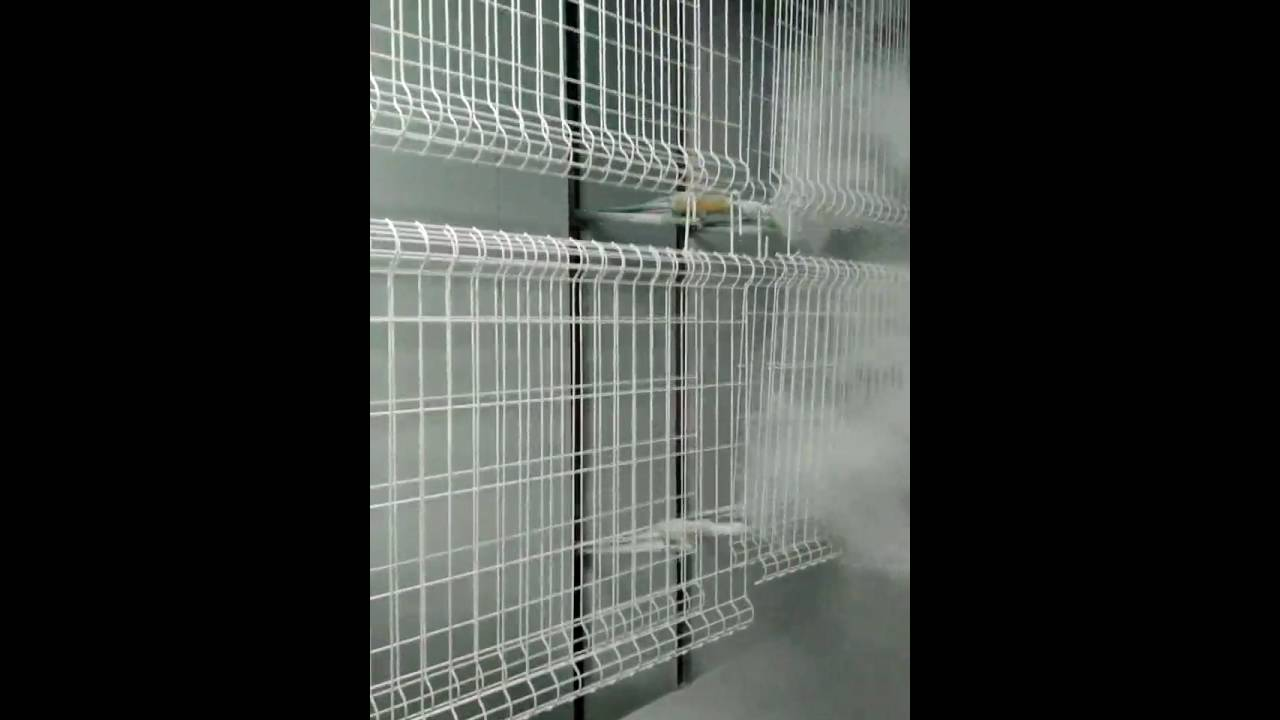 Powder Coating Welded Wire Mesh Fence Has A Pre-galvanized Treatment ...