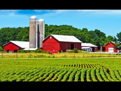 Farm To Table Philosophy YouTube - Farm to table philosophy