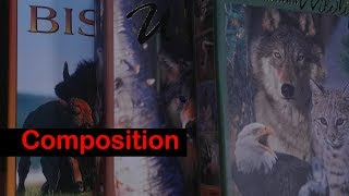 Composition for Beginner Filmmakers!