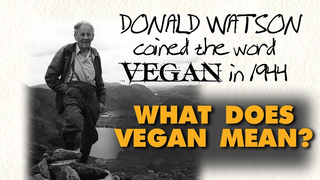what does vegan mean