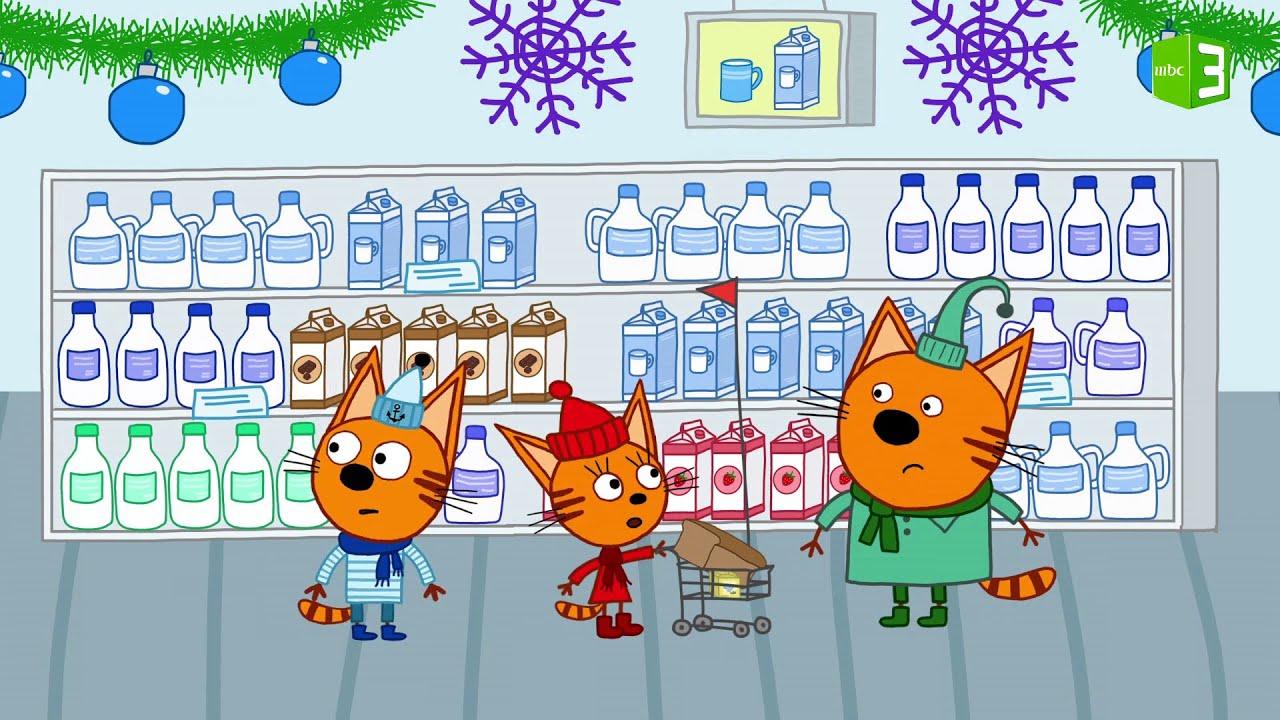 القطط الصغار في المتجر ?