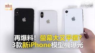 再爆料!螢幕大又平價? 3款新iPhone模型機曝光《科技大觀園》2018.08.08