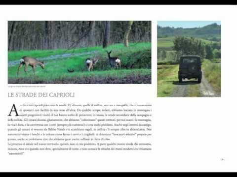 STRADE DEL MONDO (www.stradedelmondo.it)