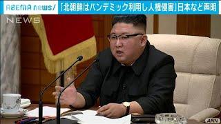 パンデミック利用し人権侵害・・・日独などが北朝鮮非難(2020年12月12日) - YouTube