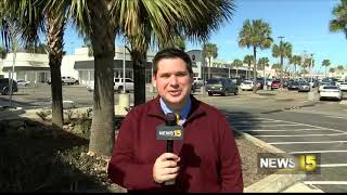 Local Palm Trees Damaged by February Cold Blast
