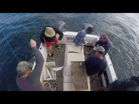 Norfolk Island Fishing