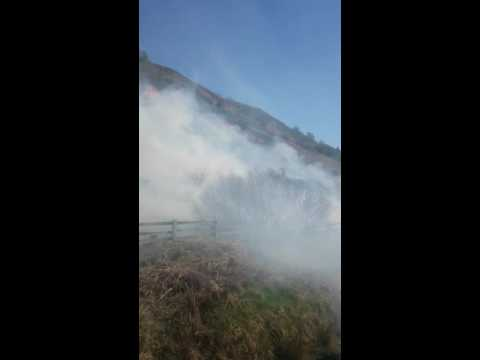 North Yorkshire Moors Railway fire - 9 may 16