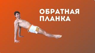 Обратная Планка Упражнения для Позвоночника Kononov