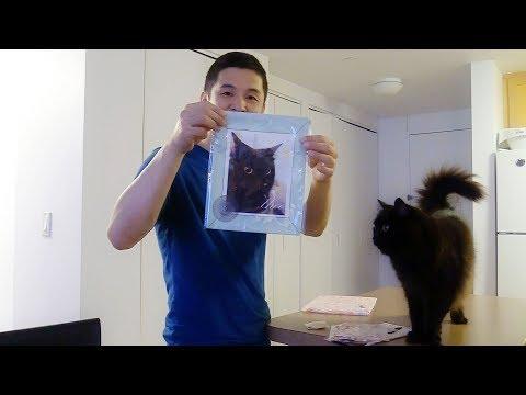 しおちゃん写真展&グッズの案内 Theo's photo exhibition and goods.