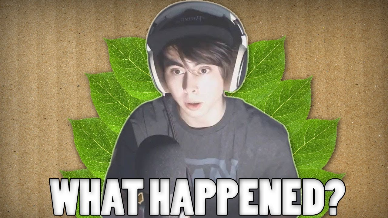 What Happened To Leafyishere? - The End Of A Channel