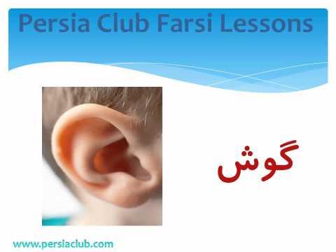 Persia Club Farsi / Persian Lessons: Persian / Farsi Vocabulary: Human Body