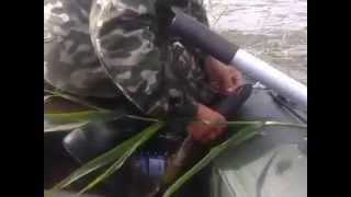 Как ловить на кружок. Ловля щуки на живца видео. Рыбалка летом(Ловля щуки в июне на кружки на озере (на живца). Летняя рыбалка на окуня и щучку (июнь-июль), 2015-06-29T19:44:19.000Z)