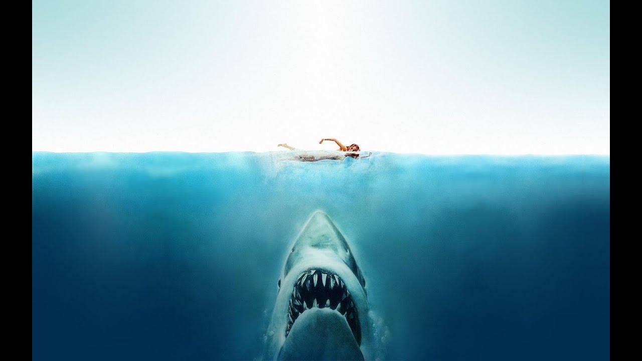 Dünyadaki en tehlikeli köpekbalığı, kendine girdiğin köpekbalığıdır