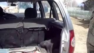 Совет. Для чего необходимо возить кирпич в машине