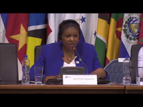 St. Lucia's Foreign Minister (Part 2) on Panel Discussion at OAS G.A.